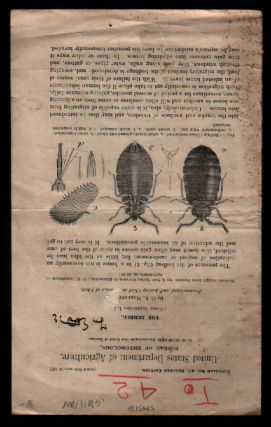 The Bedbug (United States Department of Agriculture, Circular No. 47, Revised Edition February...