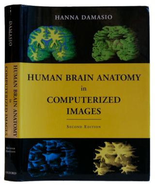 Human Brain Anatomy in Computerized Images. Hanna Damasio