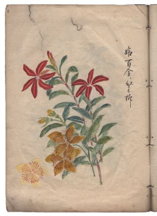 [Illustrated Book of Flowers and Floral Patterns]